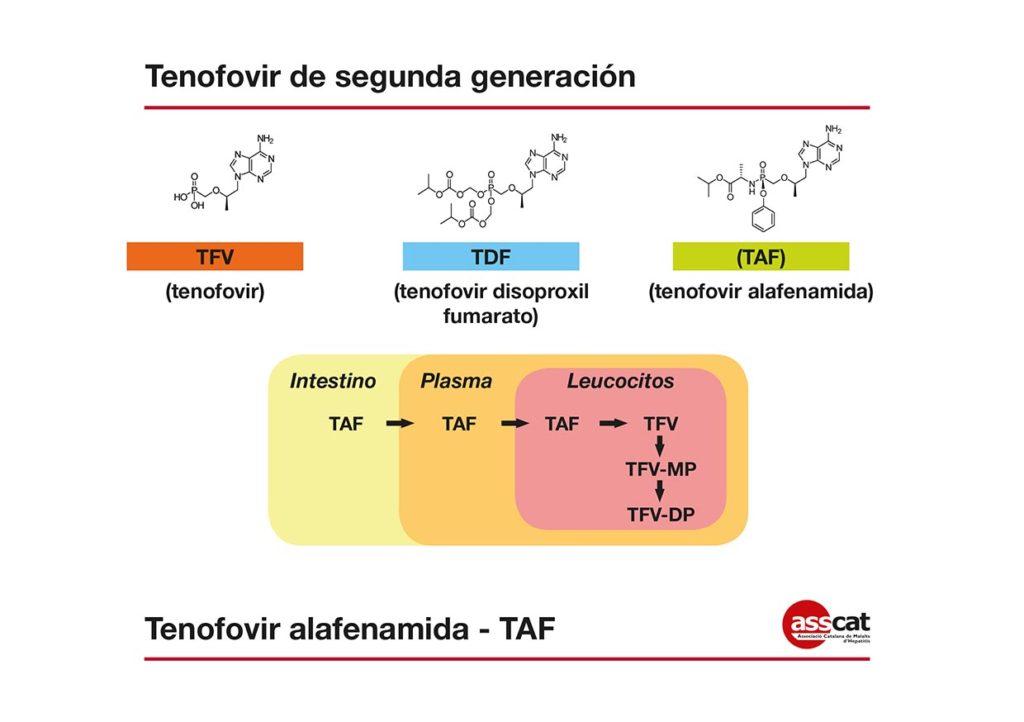 Tenofovir-1 cast