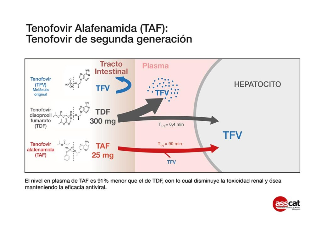Tenofovir-2 cast