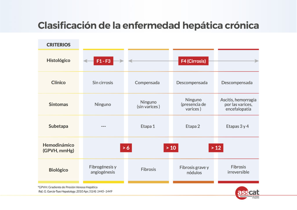 Analisis sangre valores hepaticos