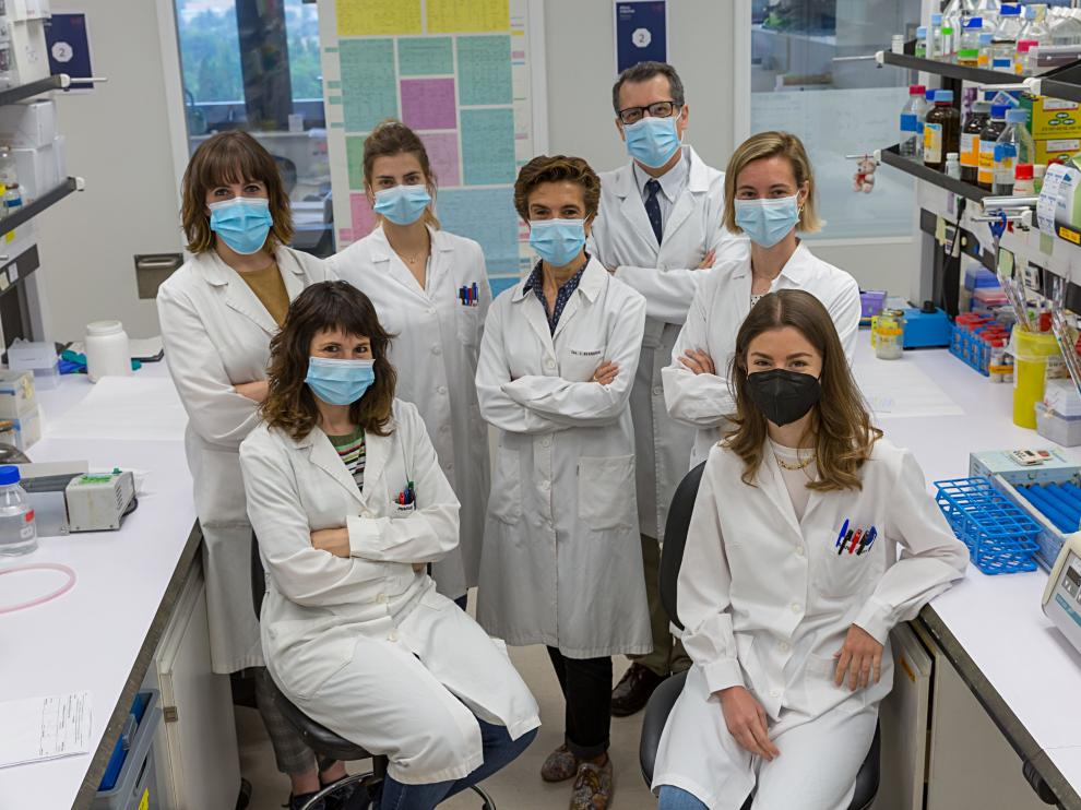 Científicos desvelan mecanismos esenciales para las funciones hepáticas