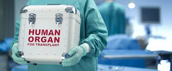 Els òrgans de persones portadores del virus de l'hepatitis C actualment són vàlids per a ser trasplantats (experiència dels Estats Units)