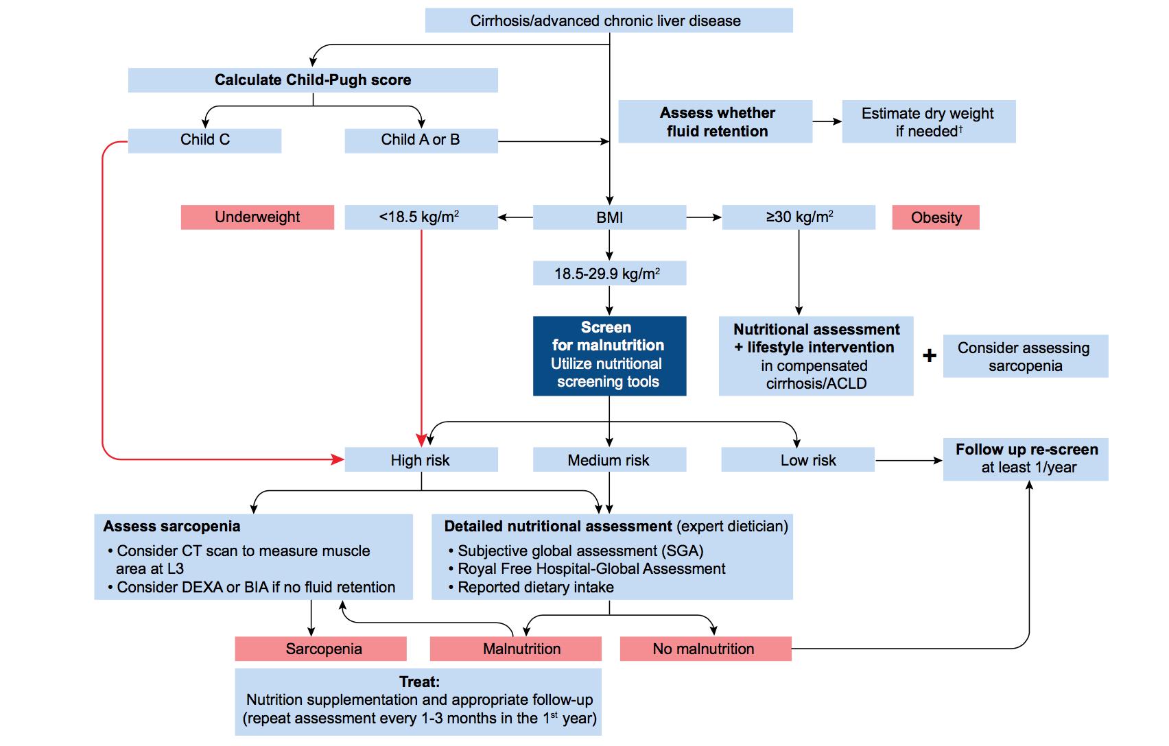 Tipos de derivaciones para hipertensión portal