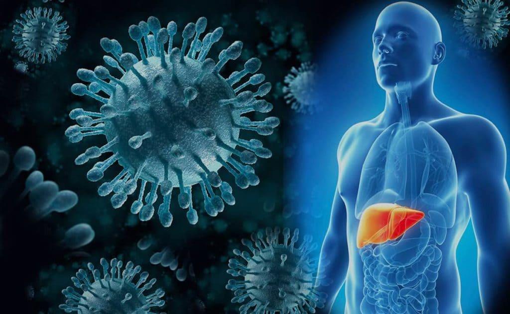 Logran por primera vez eliminar el virus de la hepatitis B