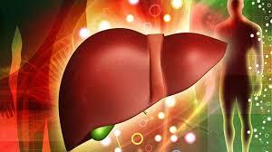 Un estudio demuestra que los hígados de pacientes con hepatitis C son seguros para el trasplante si se tratan